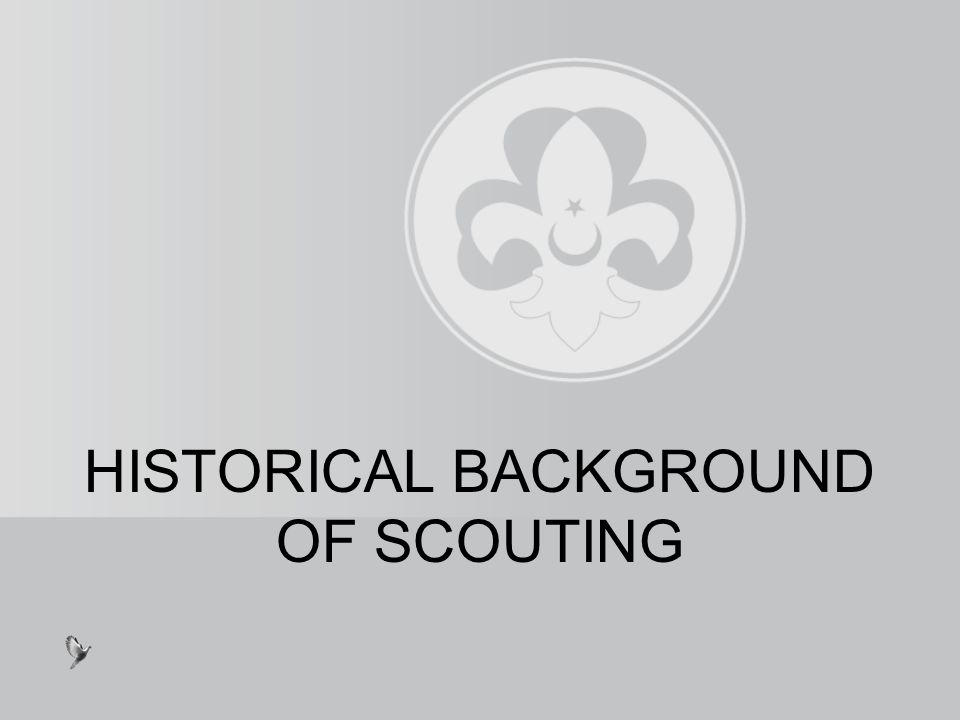 Afterthat, in 1908, he wrote his scouting book for boy scouts.