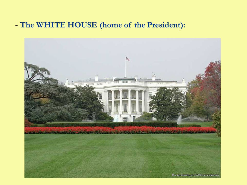 - The WHITE HOUSE (home of the President):
