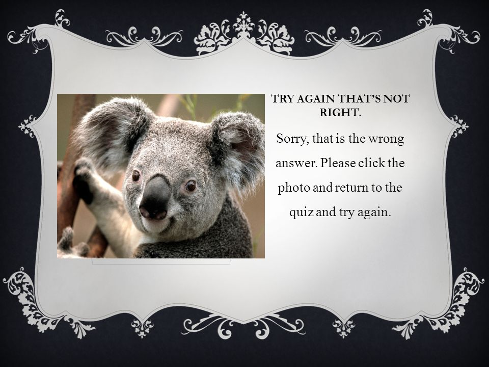 TRY AGAIN THATS NOT RIGHT. Sorry, that is the wrong answer. Please click the photo and return to the quiz and try again.