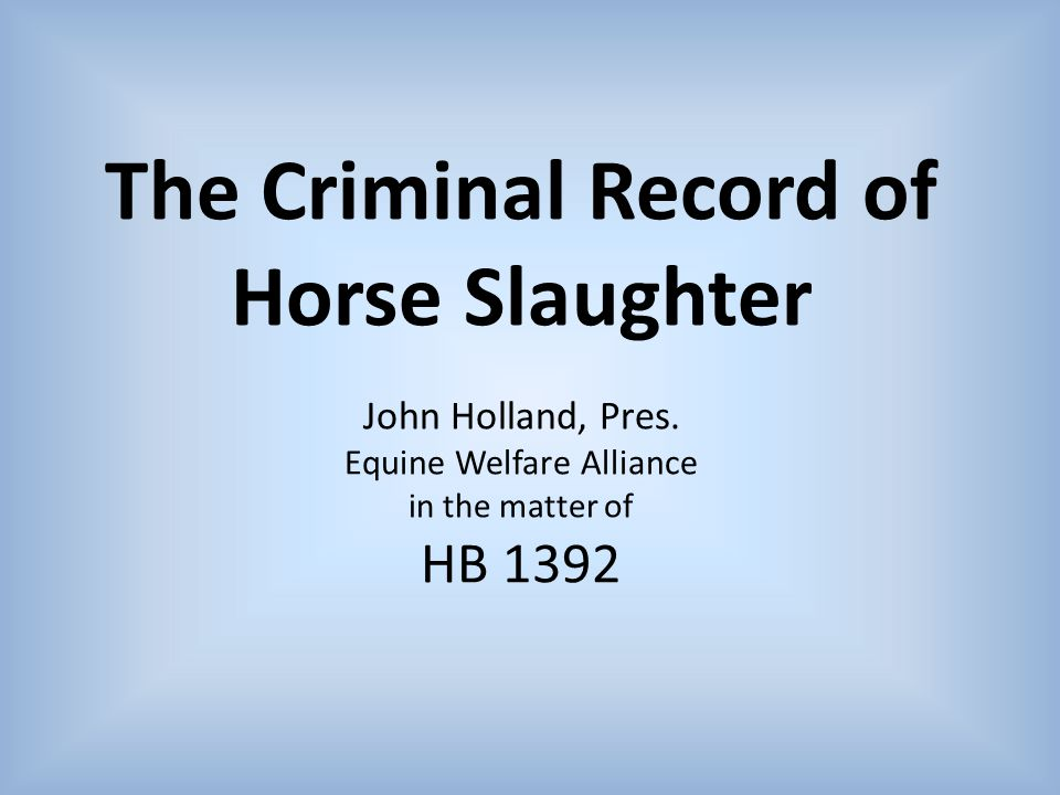 The Criminal Record of Horse Slaughter John Holland, Pres.