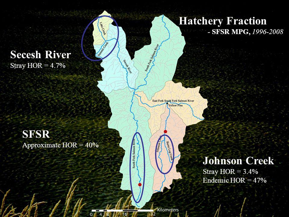 Secesh River Stray HOR = 4.7% Johnson Creek Stray HOR = 3.4% Endemic HOR = 47% Hatchery Fraction - SFSR MPG, 1996-2008 SFSR Approximate HOR = 40%