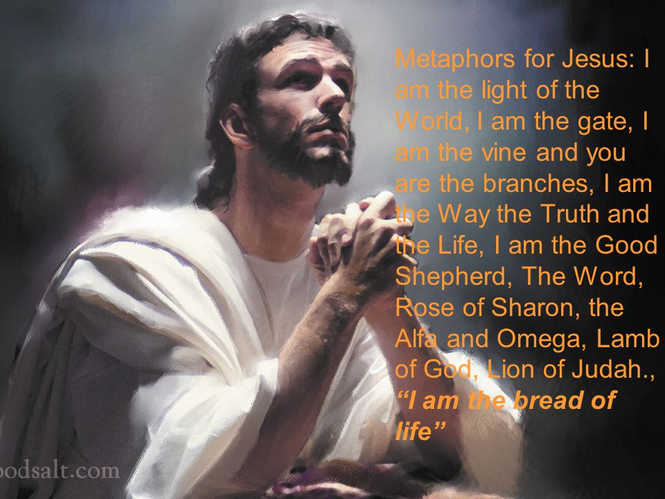 Metaphors for Jesus: I am the light of the World, I am the gate, I am the vine and you are the branches, I am the Way the Truth and the Life, I am the Good Shepherd, The Word, Rose of Sharon, the Alfa and Omega, Lamb of God, Lion of Judah., I am the bread of life