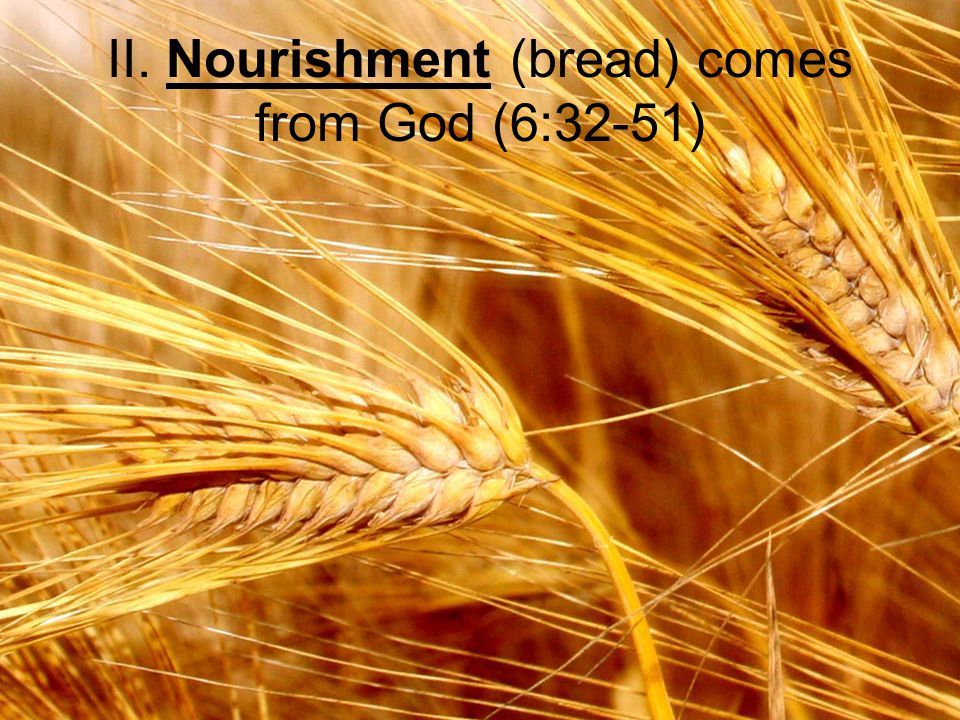II. Nourishment (bread) comes from God (6:32-51)
