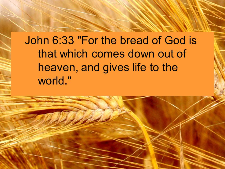 John 6:33 For the bread of God is that which comes down out of heaven, and gives life to the world.