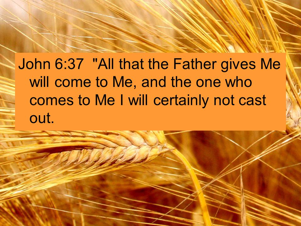 John 6:37 All that the Father gives Me will come to Me, and the one who comes to Me I will certainly not cast out.