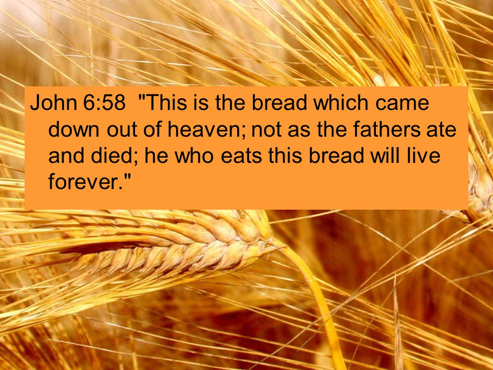 John 6:58 This is the bread which came down out of heaven; not as the fathers ate and died; he who eats this bread will live forever.