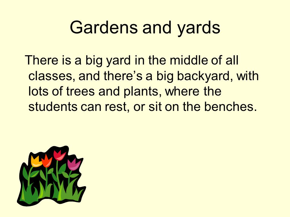 Gardens and yards There is a big yard in the middle of all classes, and theres a big backyard, with lots of trees and plants, where the students can rest, or sit on the benches.