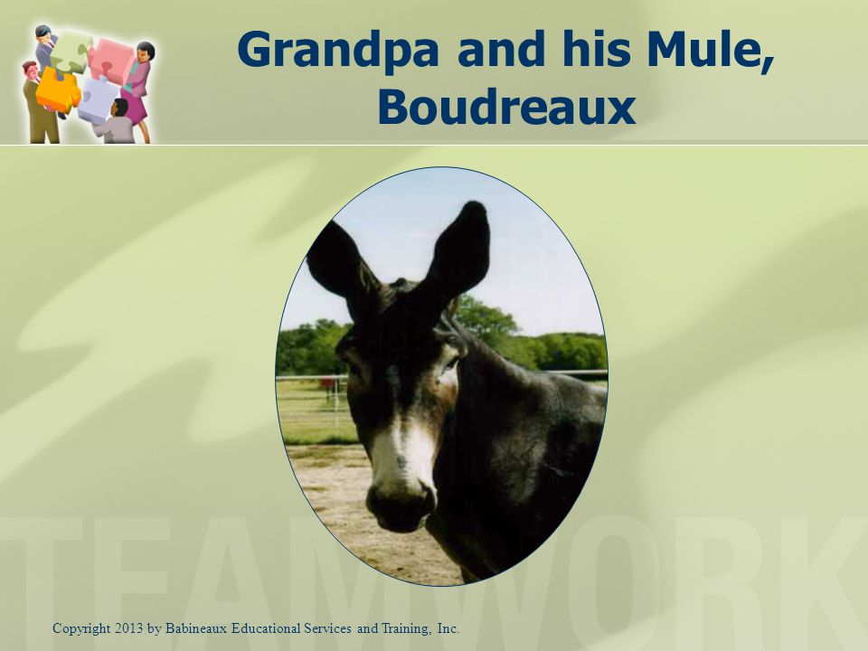 Putting Together Effective Cross-Functional Teams A Lot Like Grandpa & his mule ISM – Dallas