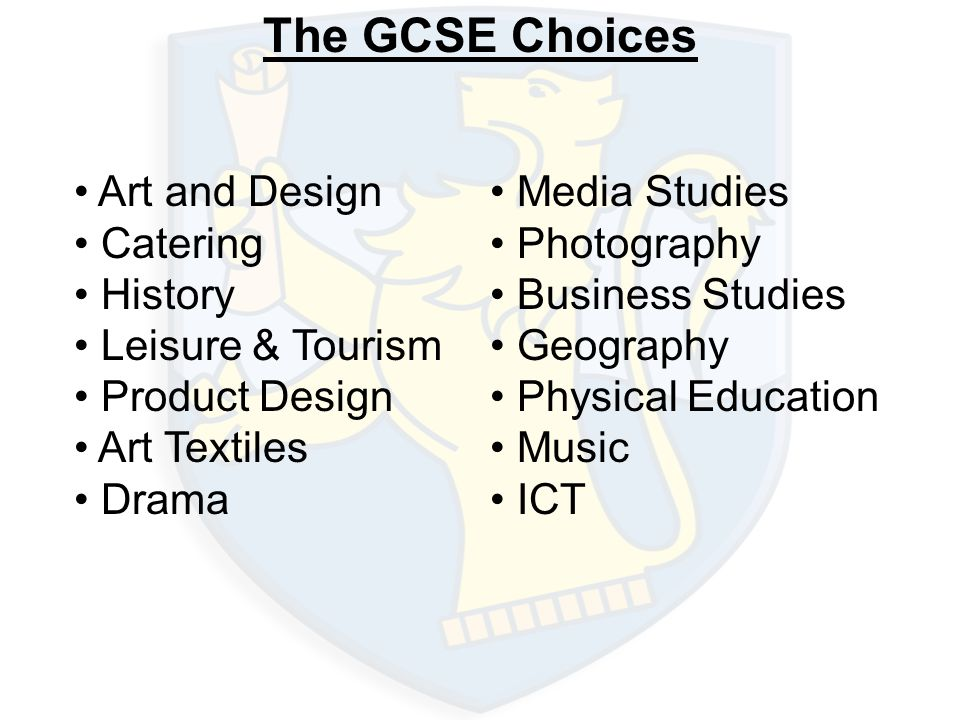 The GCSE Choices Art and Design Catering History Leisure & Tourism Product Design Art Textiles Drama Media Studies Photography Business Studies Geogra