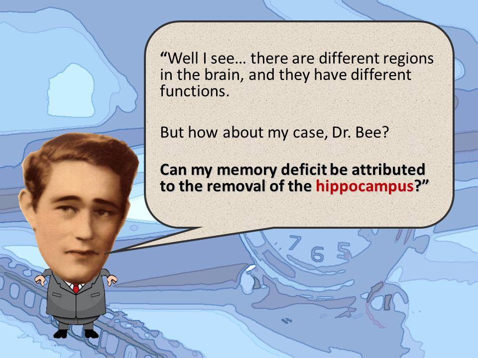 C CC Cerebral Cortex Cerebral cortex is divided into right and left hemispheres.