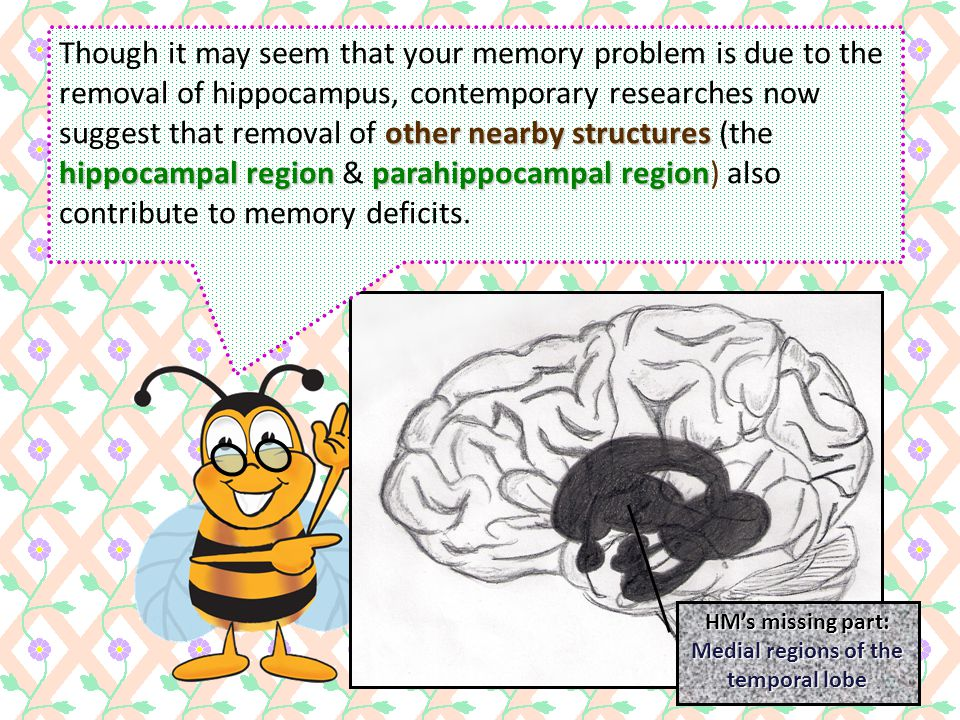 anterograde amnesia Well… that is actually a case of anterograde amnesia, in which you lose memories of events that happened after the brain surgery.