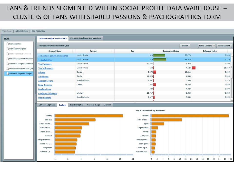 FANS & FRIENDS SEGMENTED WITHIN SOCIAL PROFILE DATA WAREHOUSE – CLUSTERS OF FANS WITH SHARED PASSIONS & PSYCHOGRAPHICS FORM