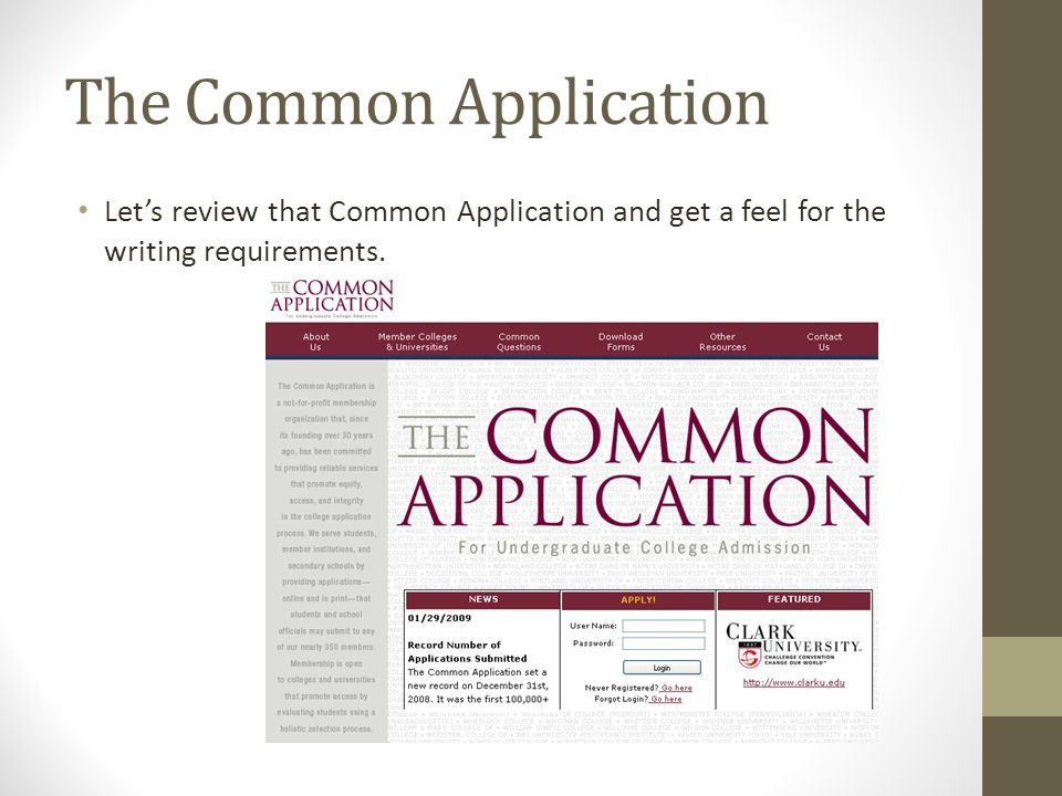 List principal activities in their order of importance to you.