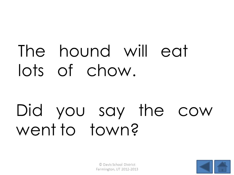 The hound will eat lots of chow.