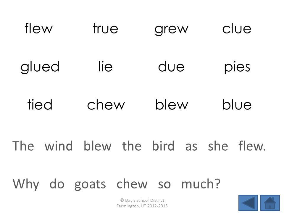 flew truegrewclue gluedlieduepies tiedchewblewblue Why do goats chew so much.