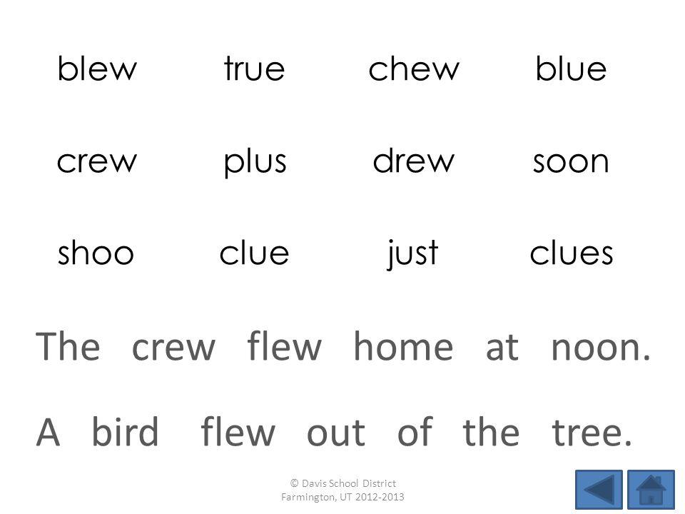 blewtruechewblue crewplusdrewsoon shoocluejustclues A bird flew out of the tree.