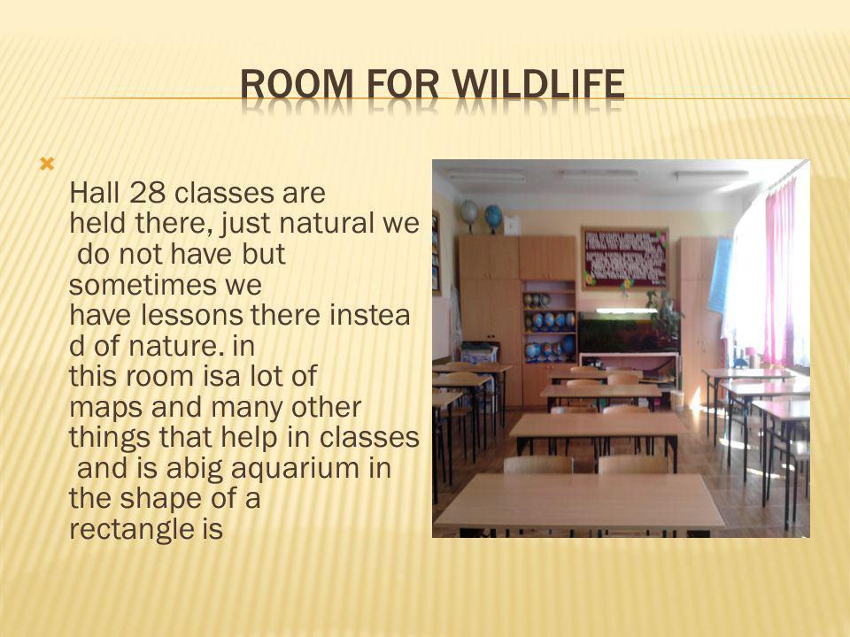 Hall 28 classes are held there, just natural we do not have but sometimes we have lessons there instea d of nature.
