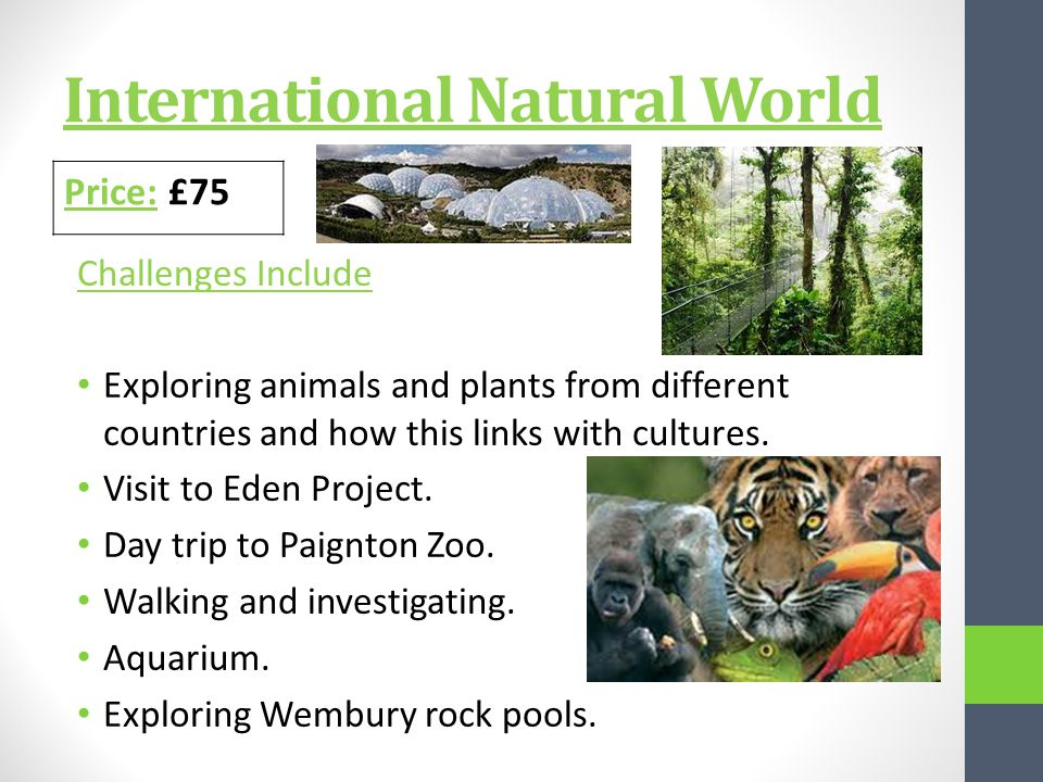 International Natural World Challenges Include Exploring animals and plants from different countries and how this links with cultures.
