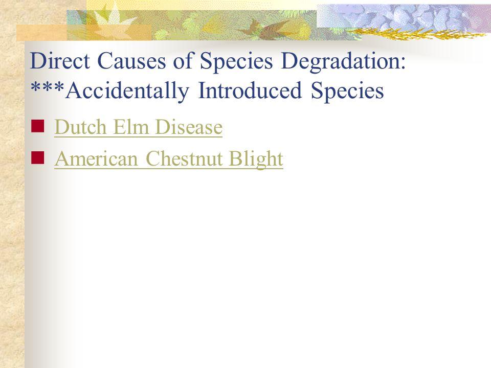Dutch Elm Disease American Chestnut Blight