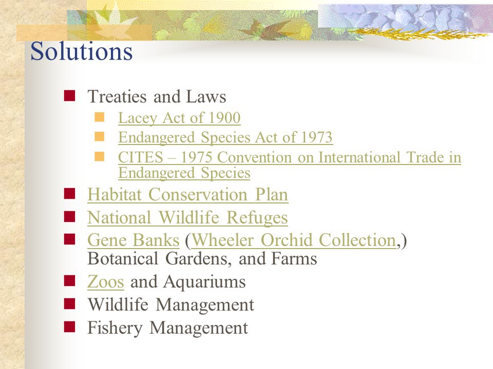 Solutions Treaties and Laws Lacey Act of 1900 Endangered Species Act of 1973 CITES – 1975 Convention on International Trade in Endangered Species CITES – 1975 Convention on International Trade in Endangered Species Habitat Conservation Plan National Wildlife Refuges Gene Banks (Wheeler Orchid Collection,) Botanical Gardens, and Farms Gene BanksWheeler Orchid Collection Zoos and Aquariums Zoos Wildlife Management Fishery Management