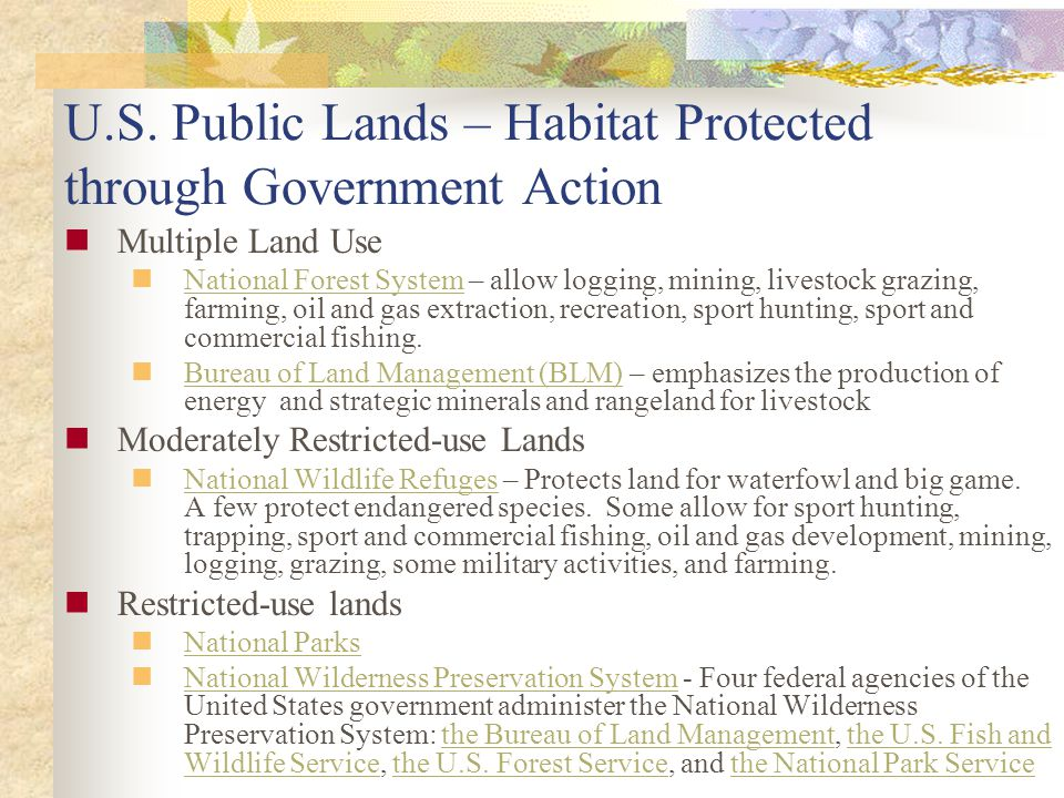 U.S. Public Lands – Habitat Protected through Government Action Multiple Land Use National Forest System – allow logging, mining, livestock grazing, f
