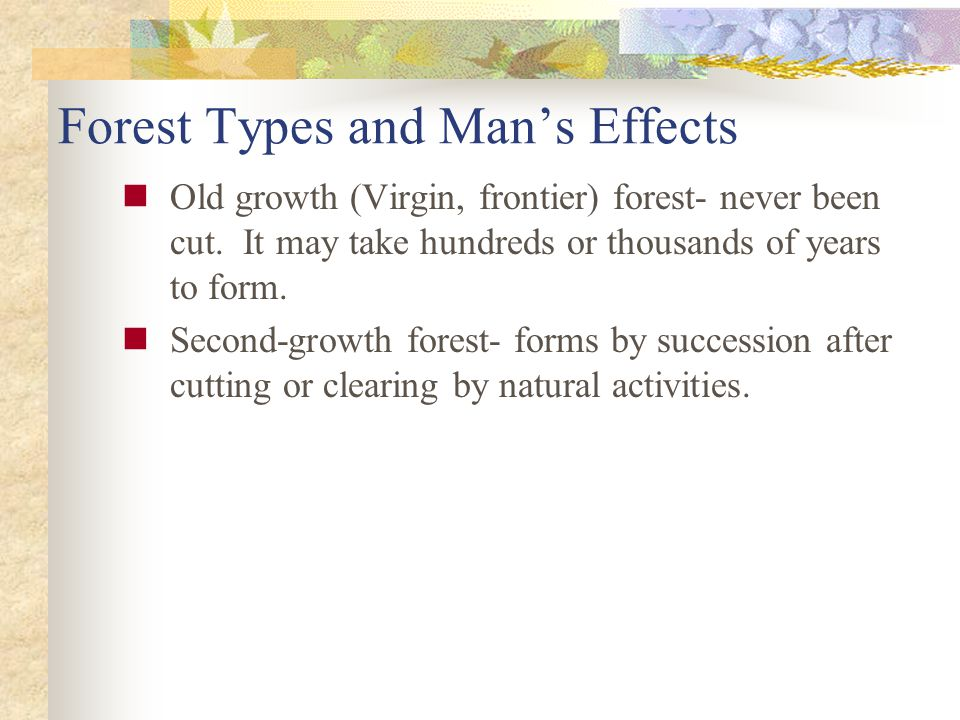 Forest Types and Mans Effects Old growth (Virgin, frontier) forest- never been cut.