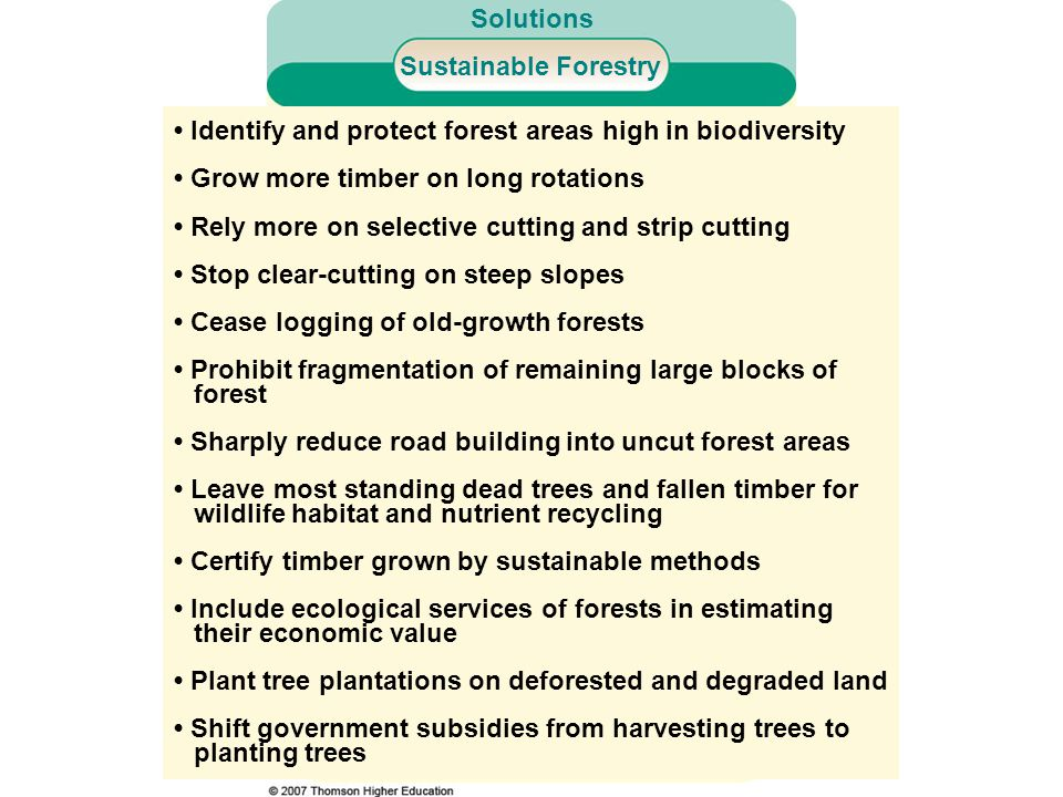 Identify and protect forest areas high in biodiversity Grow more timber on long rotations Rely more on selective cutting and strip cutting Stop clear-cutting on steep slopes Cease logging of old-growth forests Prohibit fragmentation of remaining large blocks of forest Sharply reduce road building into uncut forest areas Leave most standing dead trees and fallen timber for wildlife habitat and nutrient recycling Certify timber grown by sustainable methods Include ecological services of forests in estimating their economic value Plant tree plantations on deforested and degraded land Shift government subsidies from harvesting trees to planting trees Sustainable Forestry Solutions