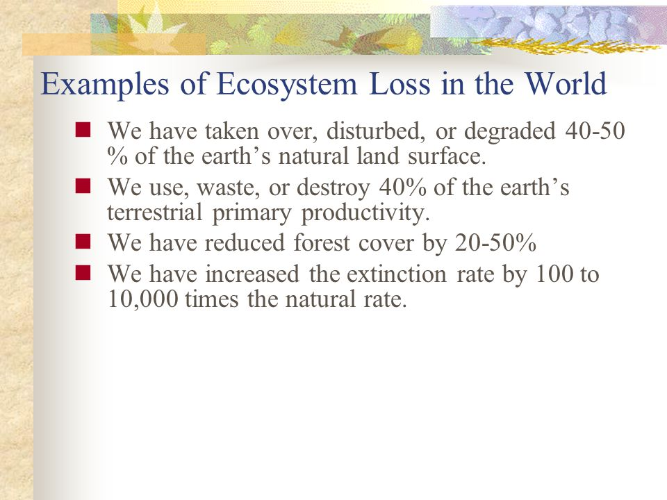We have taken over, disturbed, or degraded 40-50 % of the earths natural land surface.