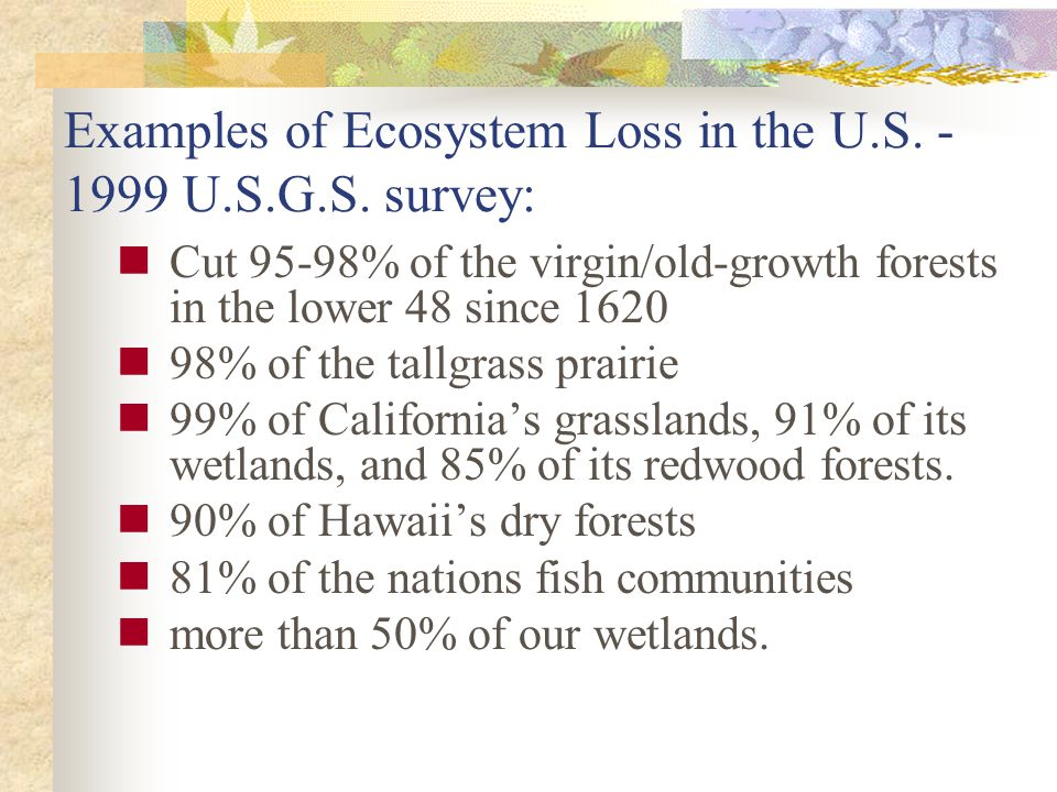 Cut 95-98% of the virgin/old-growth forests in the lower 48 since 1620 98% of the tallgrass prairie 99% of Californias grasslands, 91% of its wetlands, and 85% of its redwood forests.