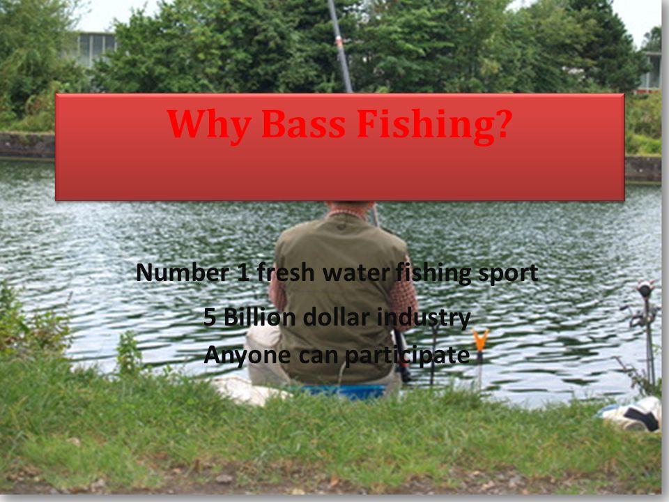 Why Bass Fishing.