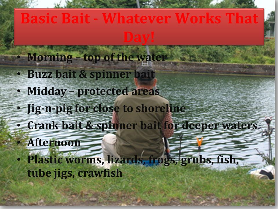 Basic Bait - Whatever Works That Day.