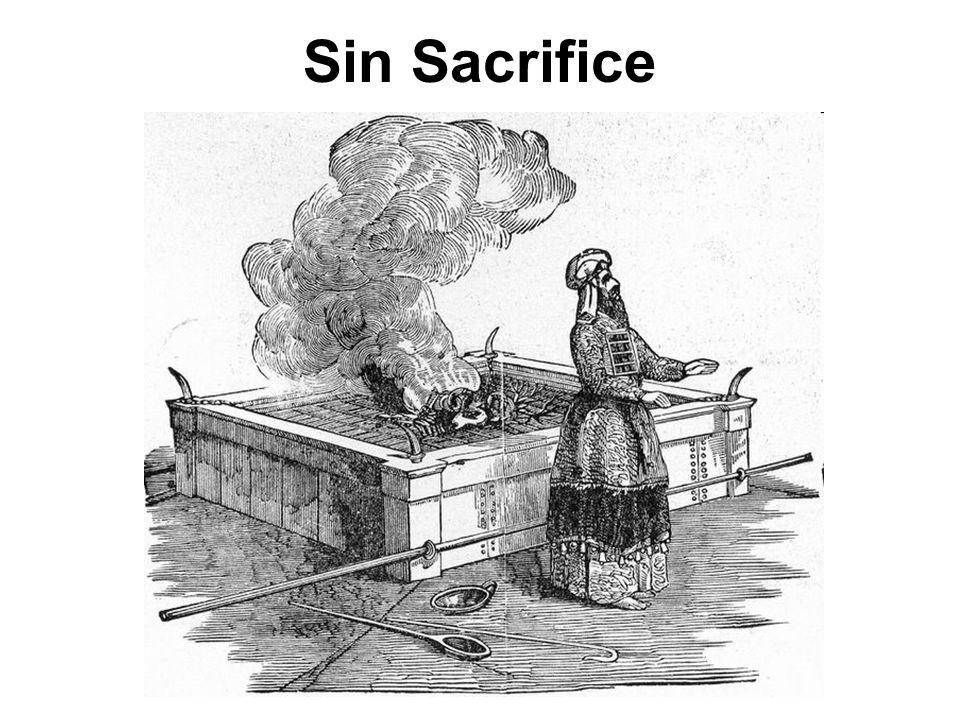 Sin Sacrifice