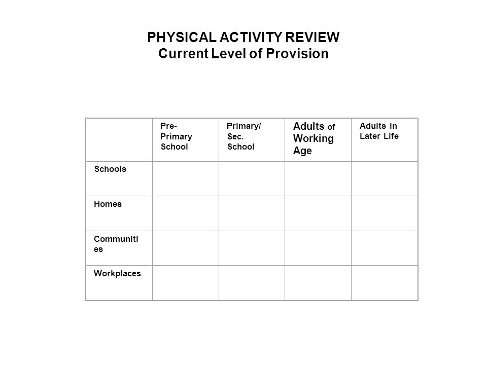 PHYSICAL ACTIVITY REVIEW Current Level of Provision Pre- Primary School Primary/ Sec.
