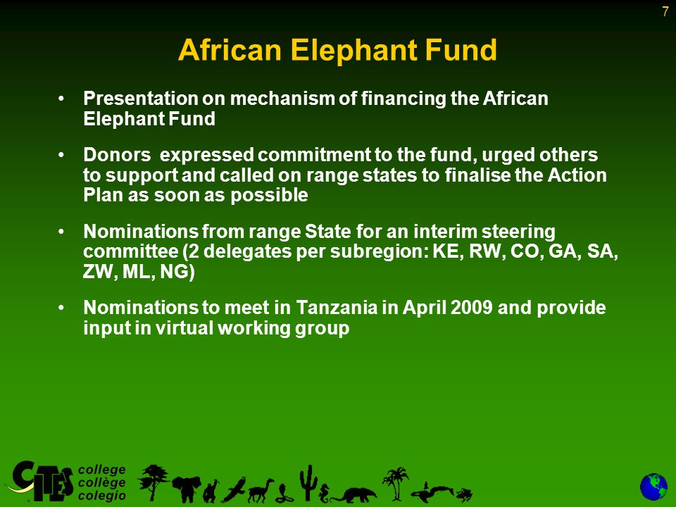 7 African Elephant Fund Presentation on mechanism of financing the African Elephant Fund Donors expressed commitment to the fund, urged others to support and called on range states to finalise the Action Plan as soon as possible Nominations from range State for an interim steering committee (2 delegates per subregion: KE, RW, CO, GA, SA, ZW, ML, NG) Nominations to meet in Tanzania in April 2009 and provide input in virtual working group