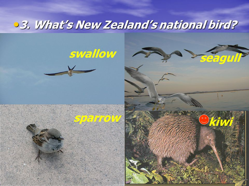 2. Whats New Zealands National Day. 2. Whats New Zealands National Day.