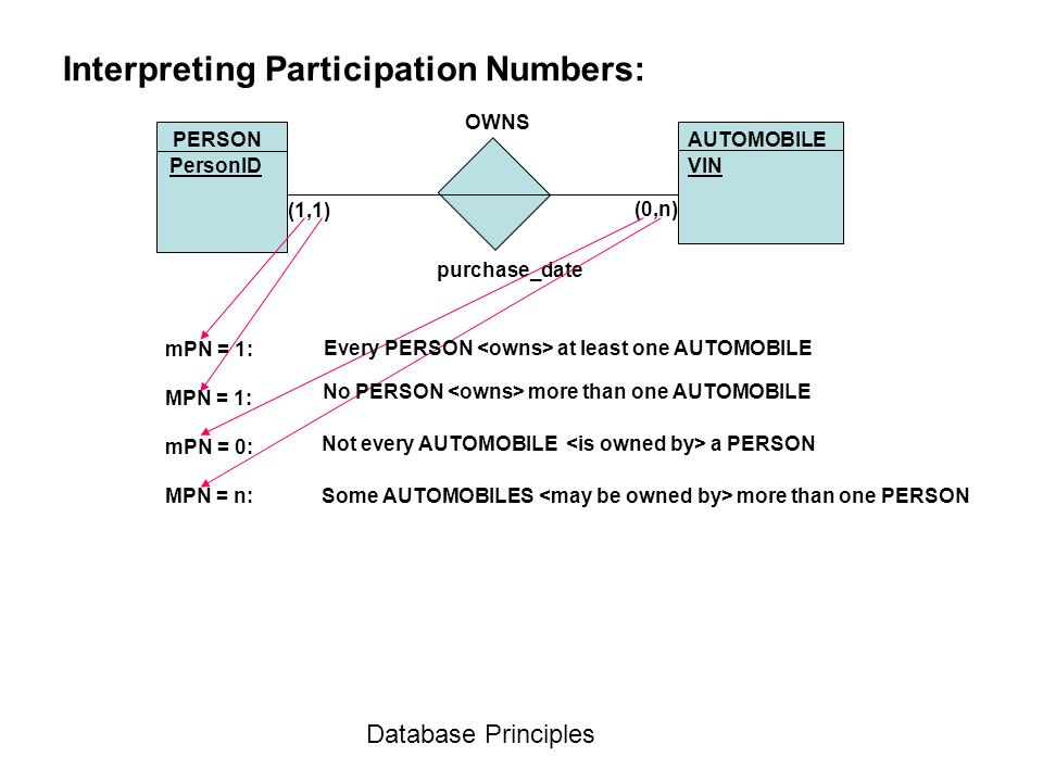 Database Principles Interpreting Participation Numbers: AUTOMOBILE OWNS purchase_date PERSON VINPersonID (1,1) (0,n) mPN = 1: MPN = 1: mPN = 0: MPN =