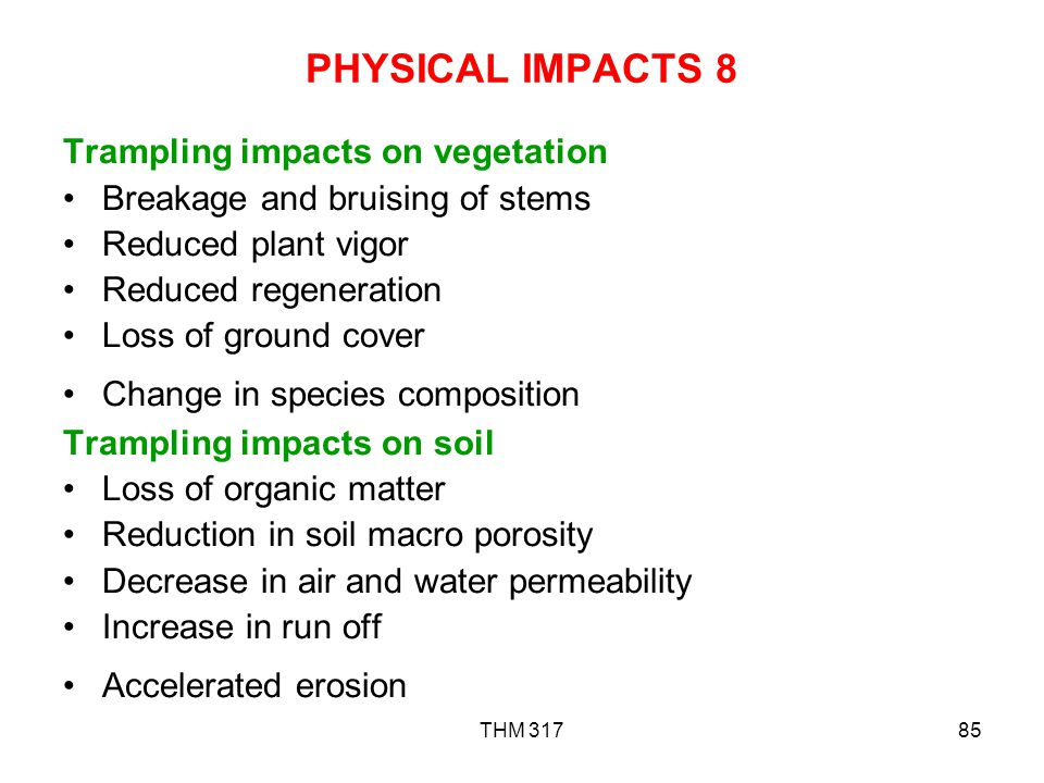 THM 31785 PHYSICAL IMPACTS 8 Trampling impacts on vegetation Breakage and bruising of stems Reduced plant vigor Reduced regeneration Loss of ground cover Change in species composition Trampling impacts on soil Loss of organic matter Reduction in soil macro porosity Decrease in air and water permeability Increase in run off Accelerated erosion