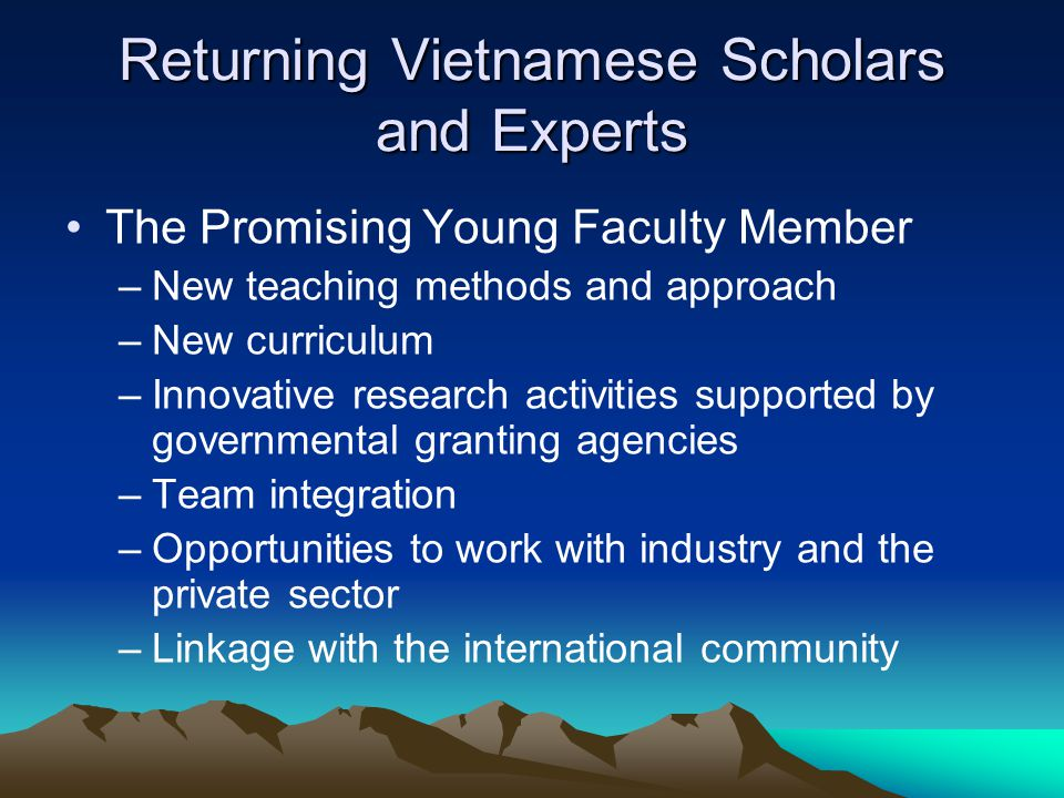 Returning Vietnamese Scholars and Experts The Promising Young Faculty Member –New teaching methods and approach –New curriculum –Innovative research activities supported by governmental granting agencies –Team integration –Opportunities to work with industry and the private sector –Linkage with the international community