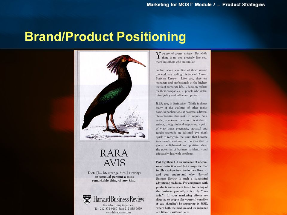 Marketing for MOST: Module 7 – Product Strategies Brand/Product Positioning