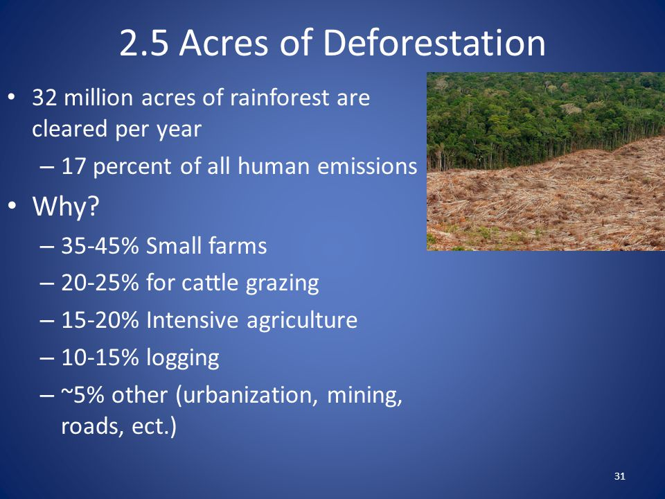32 million acres of rainforest are cleared per year – 17 percent of all human emissions Why? – 35-45% Small farms – 20-25% for cattle grazing – 15-20%
