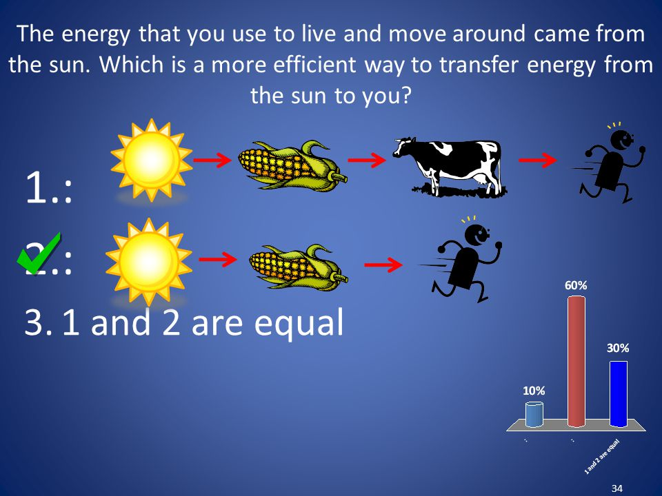 The energy that you use to live and move around came from the sun. Which is a more efficient way to transfer energy from the sun to you? 34 1.: 2.: 3.