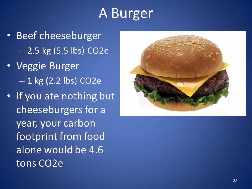 Beef cheeseburger – 2.5 kg (5.5 lbs) CO2e Veggie Burger – 1 kg (2.2 lbs) CO2e If you ate nothing but cheeseburgers for a year, your carbon footprint f