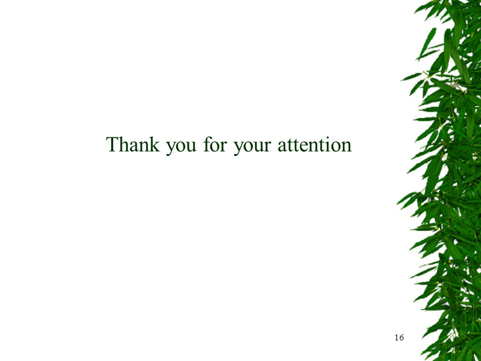 16 Thank you for your attention