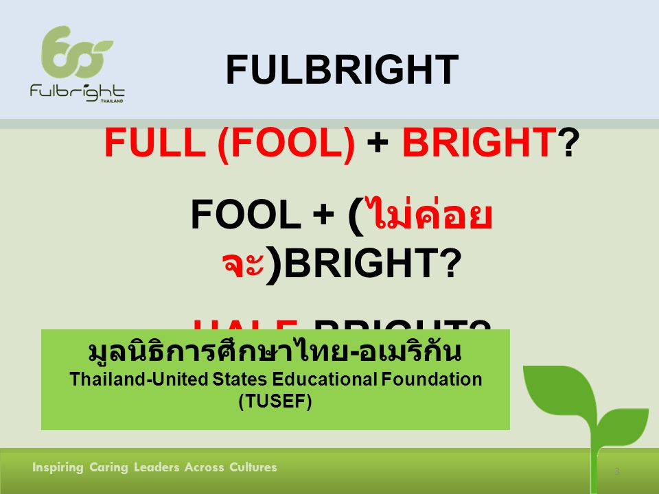 3 Inspiring Caring Leaders Across Cultures FULBRIGHT FULL (FOOL) + BRIGHT.