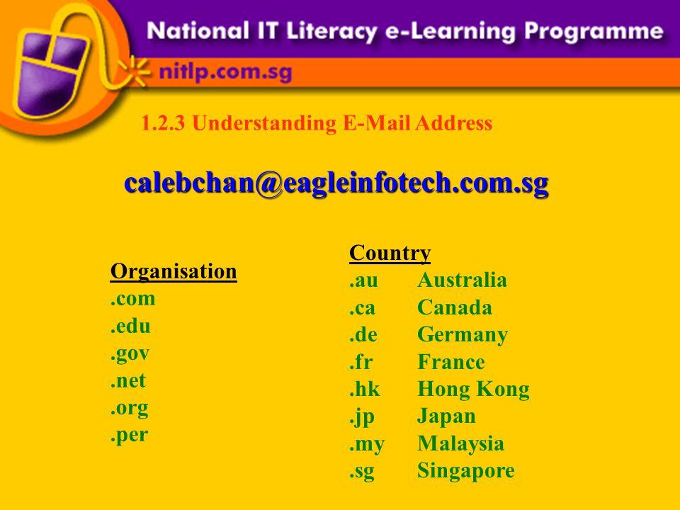 1.2.3 Understanding E-Mail Address calebchan@eagleinfotech.com.sg Organisation.com.edu.gov.net.org.per Country.auAustralia.caCanada.deGermany.frFrance.hkHong Kong.jpJapan.myMalaysia.sgSingapore