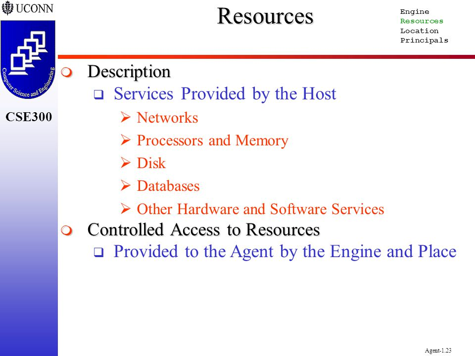CSE300 Agent-1.23Resources Description Description Services Provided by the Host Networks Processors and Memory Disk Databases Other Hardware and Soft
