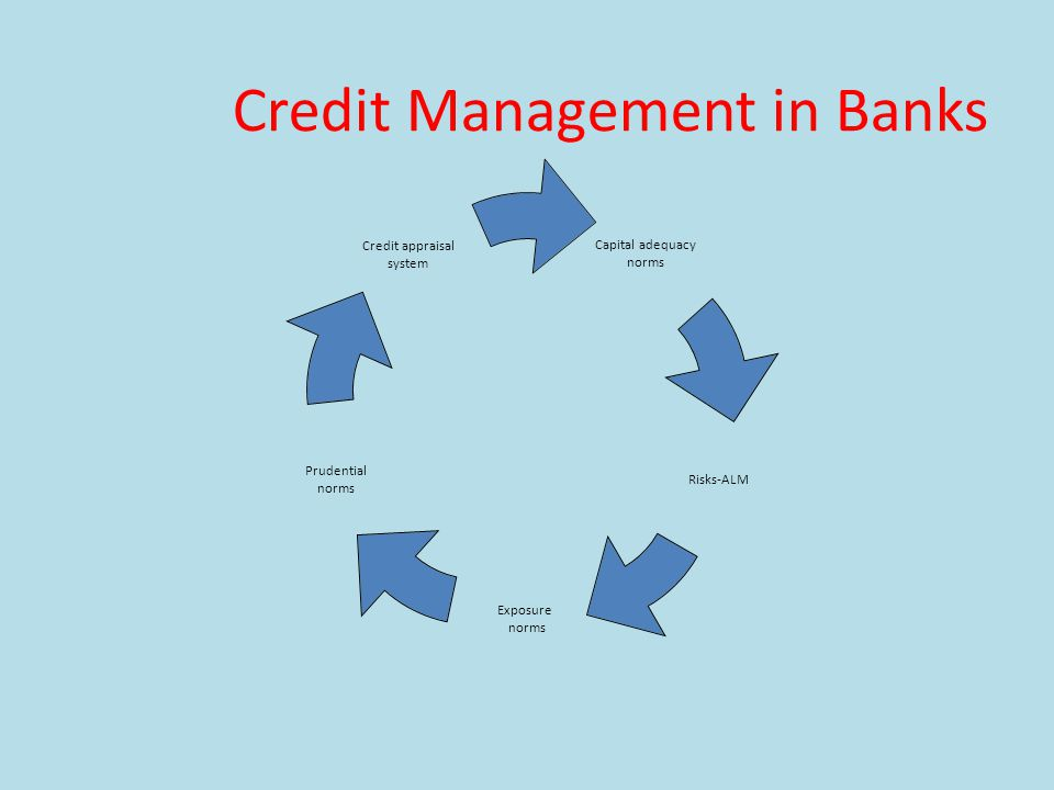 Credit Management in Banks Capital adequacy norms Risks-ALM Exposure norms Prudential norms Credit appraisal system