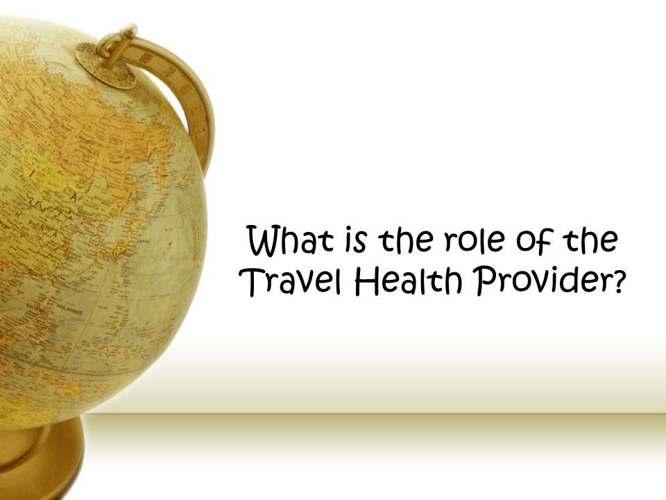 What is the role of the Travel Health Provider