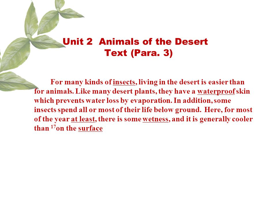 Unit 2 Animals of the Desert Text (Para.