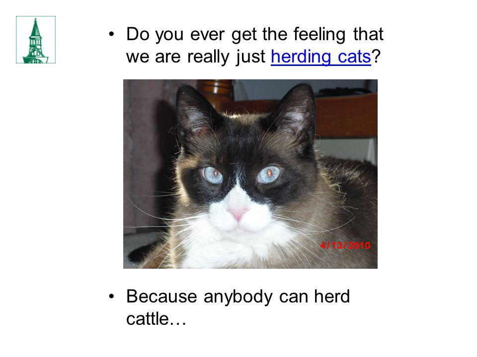 Do you ever get the feeling that we are really just herding cats? Because anybody can herd cattle…